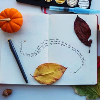 November – My Bullet Journal Monthly Spread