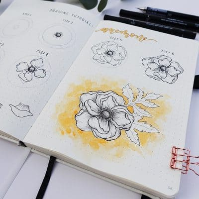 Flower Drawing Tutorial: How to Draw an Anemone Flower