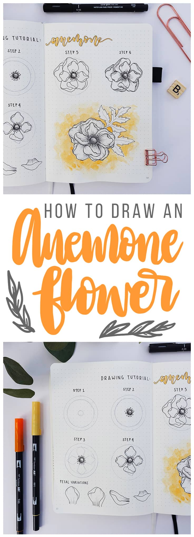 Flower drawing tutorial how to draw an anemone flower littlecoffeefox drawing flowers is a quick and easy way to make your bullet journal spread pretty izmirmasajfo