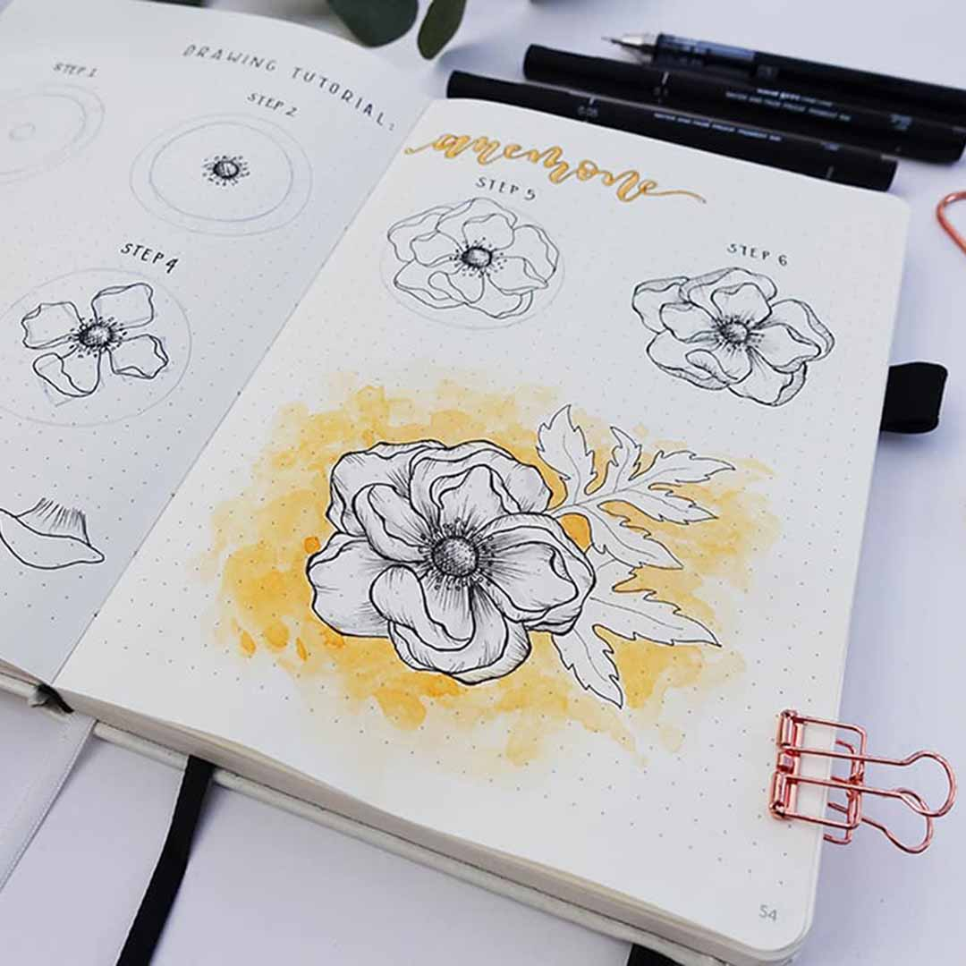 page of bullet journal with anemone flower with leaves drawing