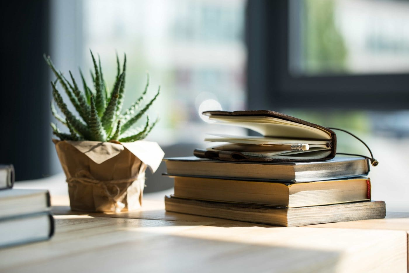 Close-up view of books, notebook with pencil and potted plant on wooden table