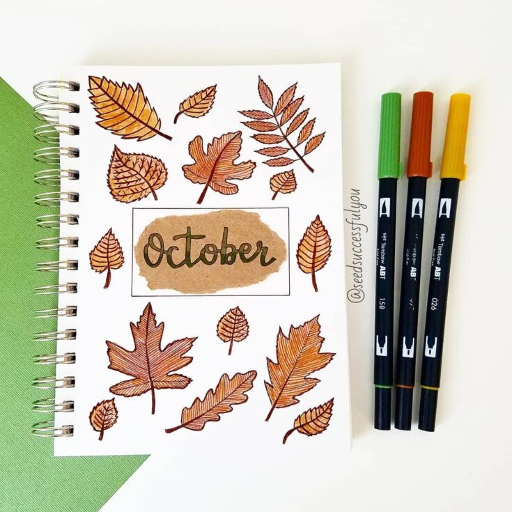 Enjoy the changing of the seasons