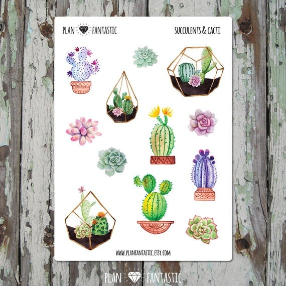 Watercolor Succulent Cute Stickers