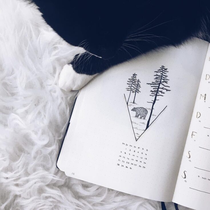 Bring The Beauty Of Nature Into Your Bullet Journal